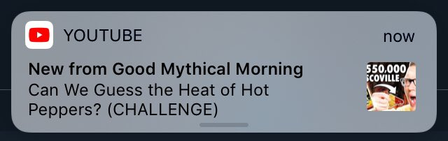 test Twitter Media - i stayed up late enough to see an episode of gmm being released live now i can sleep https://t.co/EZSqtRU3OI