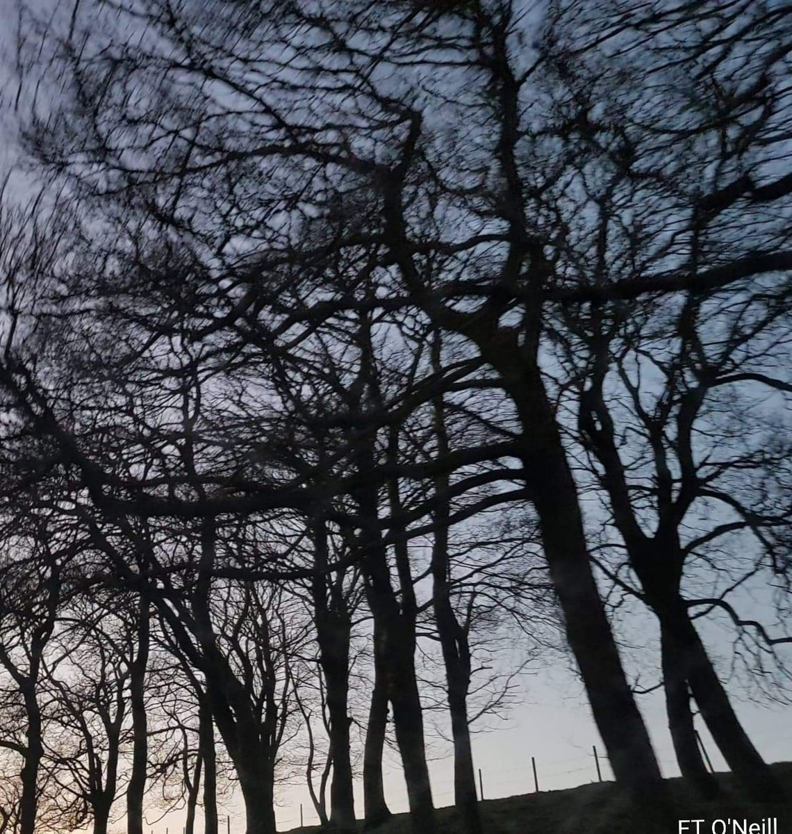 test Twitter Media - Unclear..  Twilight induces bizarre confusions  Imprecise and indistinct passings Fleeting formless flinching fogs Casting errie shadowy impressions Greyish visages of blackish apparel Steal within light's ambiguity of time Unknowns remain untouchable.. #MypoetryEileen2019 https://t.co/bX1FBcveA8