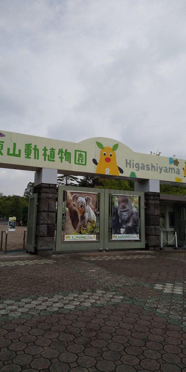 test ツイッターメディア - 東山動植物園いきました🐯🌷︎ https://t.co/UE2IaQOgIX