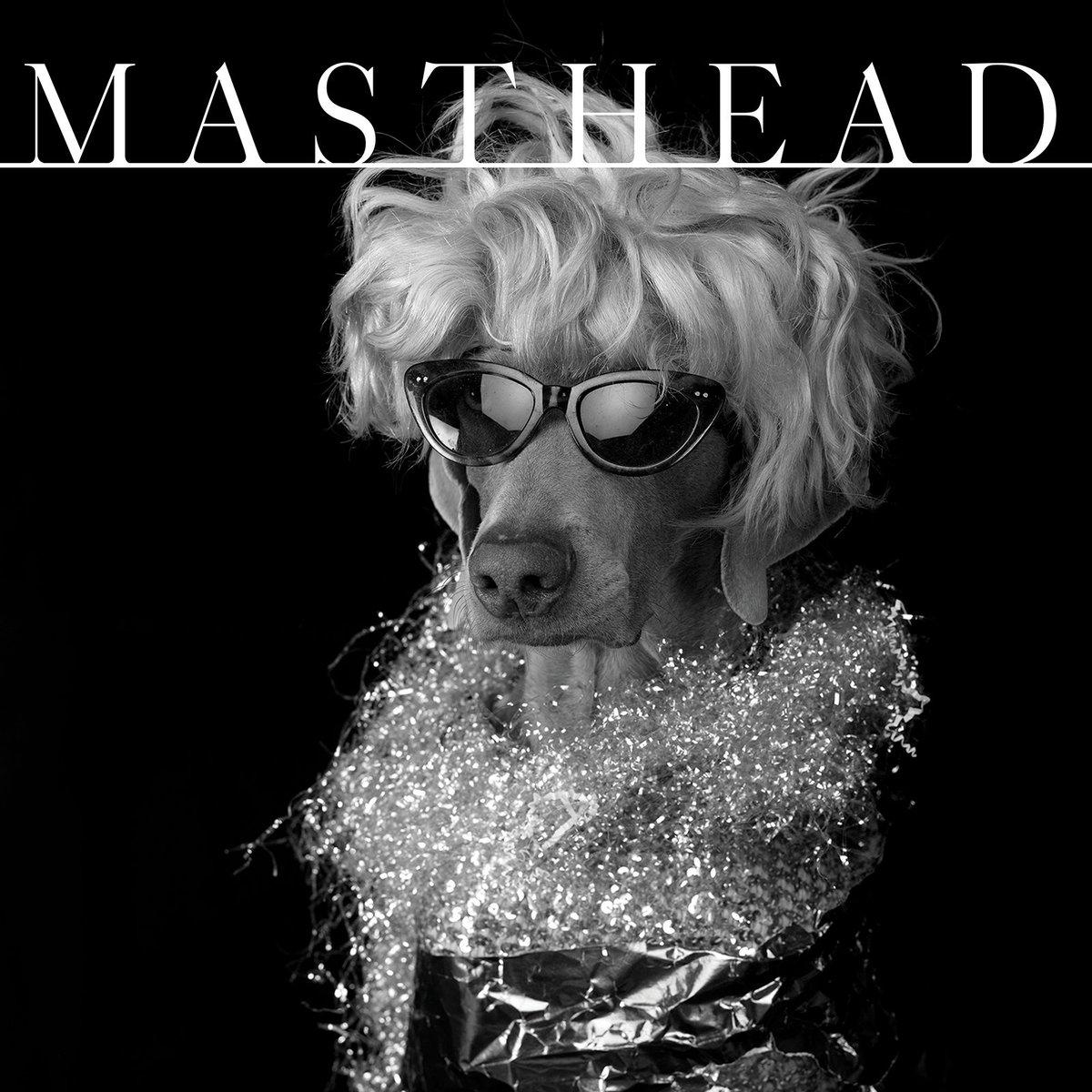 People are aliens. Dogs are old movie stars. @mastheadonline #mastheadmagazine https://t.co/iR7khDAPib