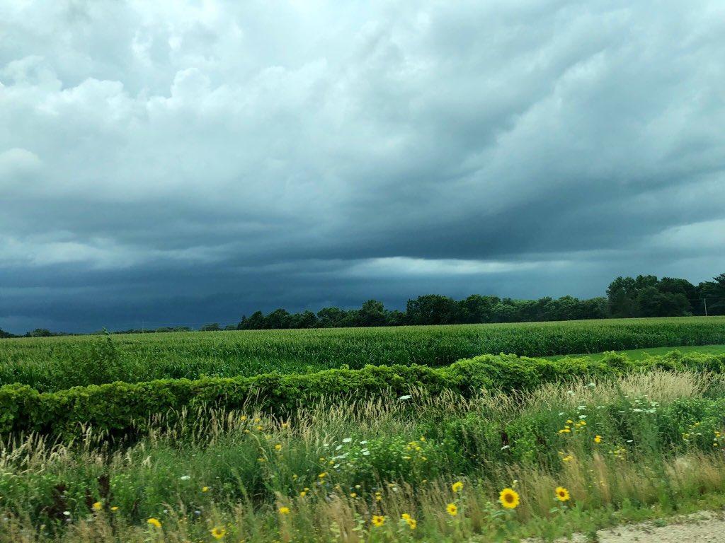 test Twitter Media - Dinosaurs, Bulldogs, Cows & Tornado watches....#roadtrip #Wisconsin https://t.co/YGXY2FI9Z4