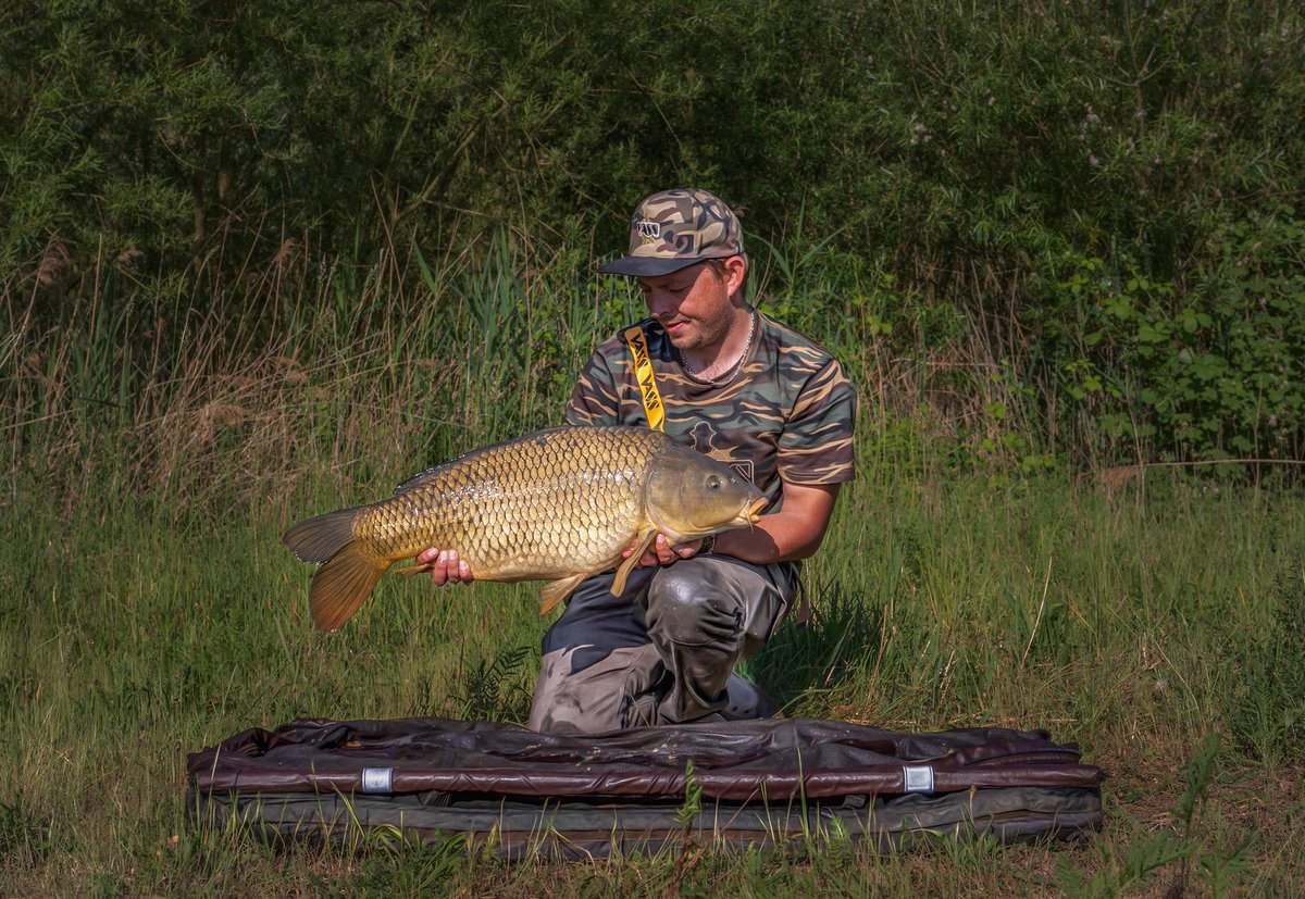 Morning common for Sebastian: https://t.co/gBubyRaO4a https://t.co/yQiA9CjKkD #carpfishing #vasssnap