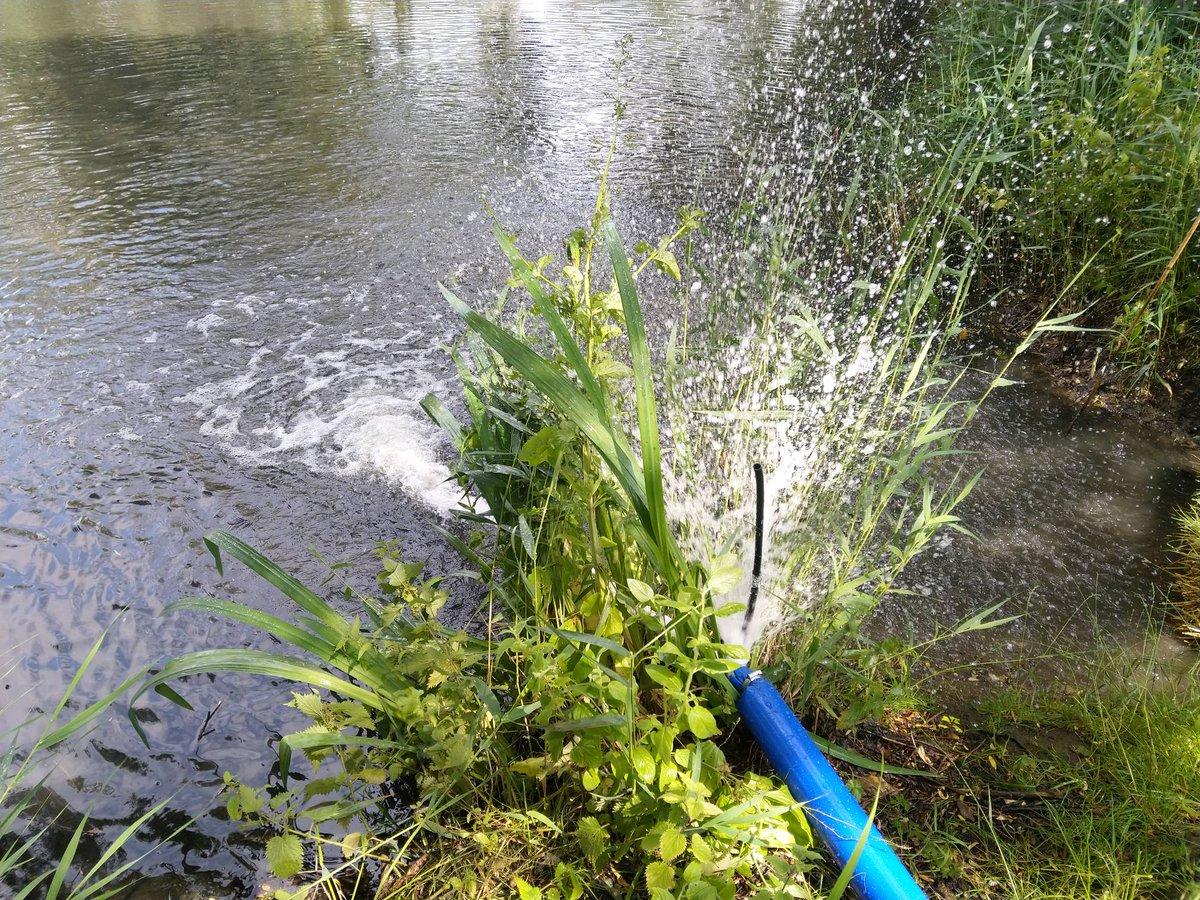 Making progress on The Moat. #RumBridgeFisheries #carpfishing #Suffolk https://t.co/LaDrMcNHoz