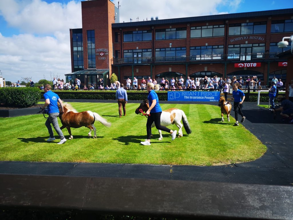test Twitter Media - The Mini Hooves Puissance @Fairyhouse looks like great fun ! https://t.co/aN6b4LZuoB