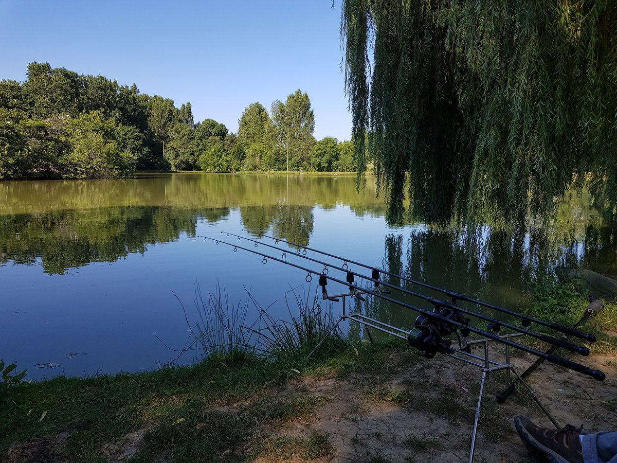 Perfect day for #tightlines - feeling hopeful.  #carpfishing #CatchandRelease #Fishinginfrance https