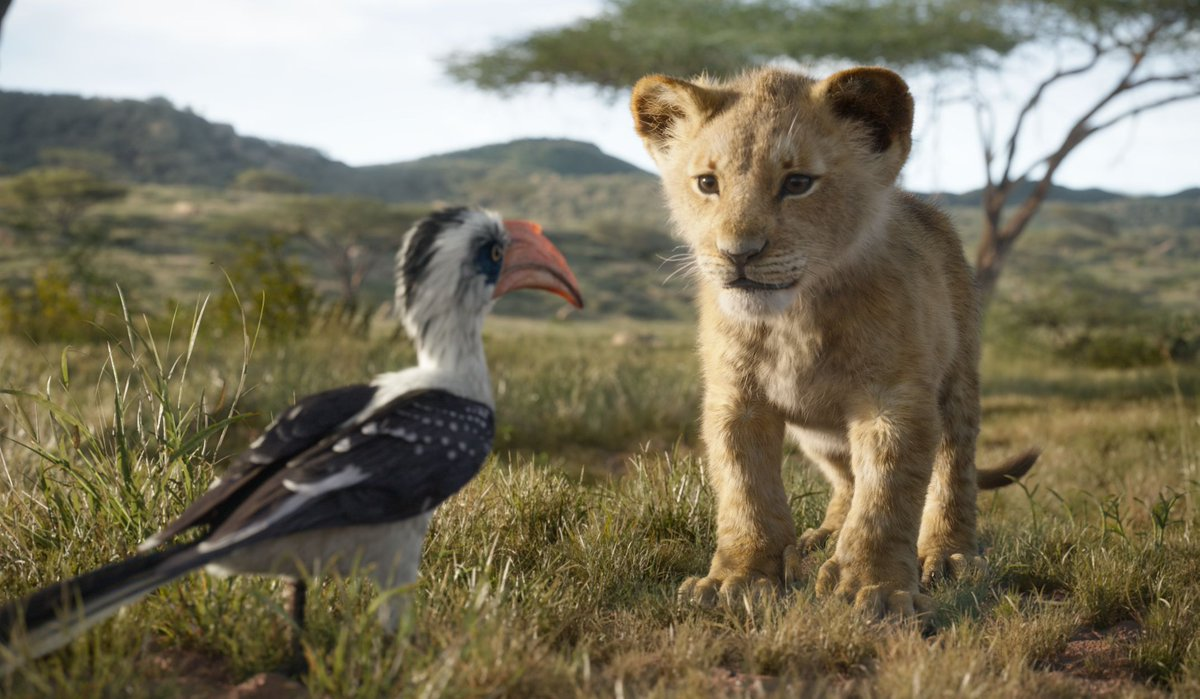 test Twitter Media - Secure your tickets today to live #TheLionKing in #DBOX July 19: https://t.co/lOnTR0TvaP   //  Achetez vos billets aujourd'hui afin de vivre le #RoiLion en #DBOX le 19 juillet: https://t.co/lOnTR0TvaP https://t.co/VgDtFkBuT7