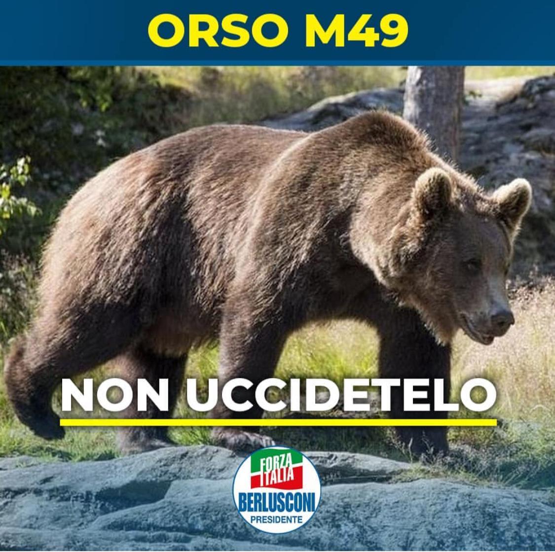 #orsoM49