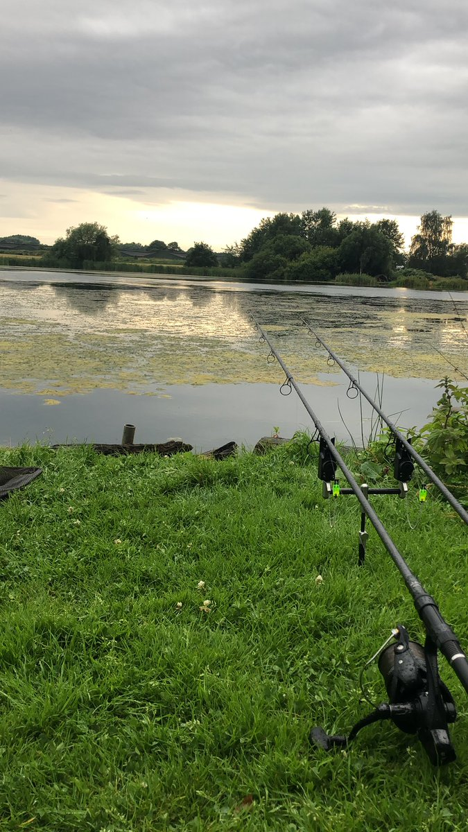 Another nice evening on the bank #carpfishing https://t.co/CZdl68lG6x