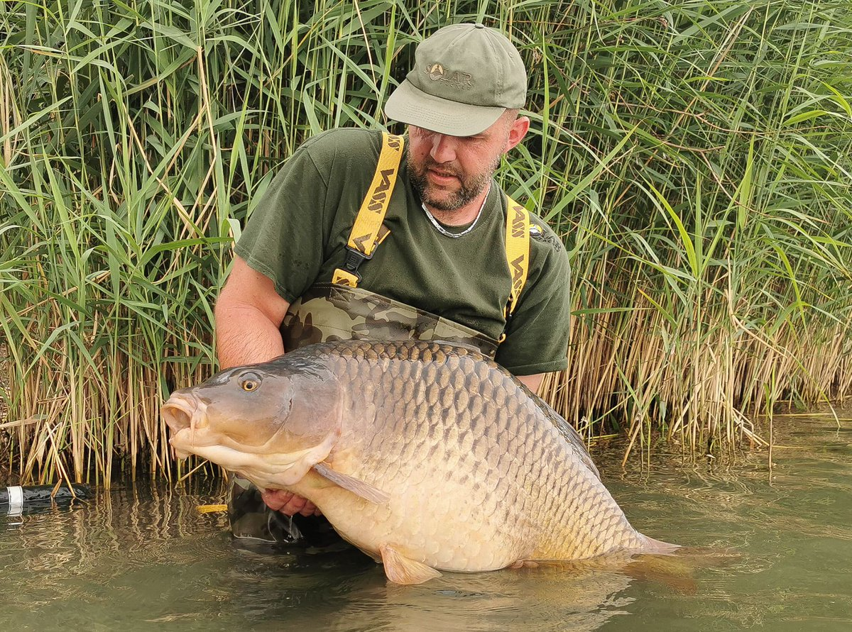 Beautiful Common for Thomas. #vasswaders #carpfishing https://t.co/sYm9xPNZ5t