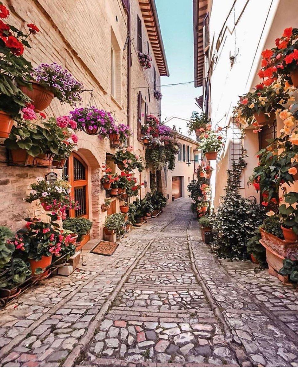 RT @castellanosce_: 📷 Spello, Italy 🏡 https://t.co/mJSBkFwDwS