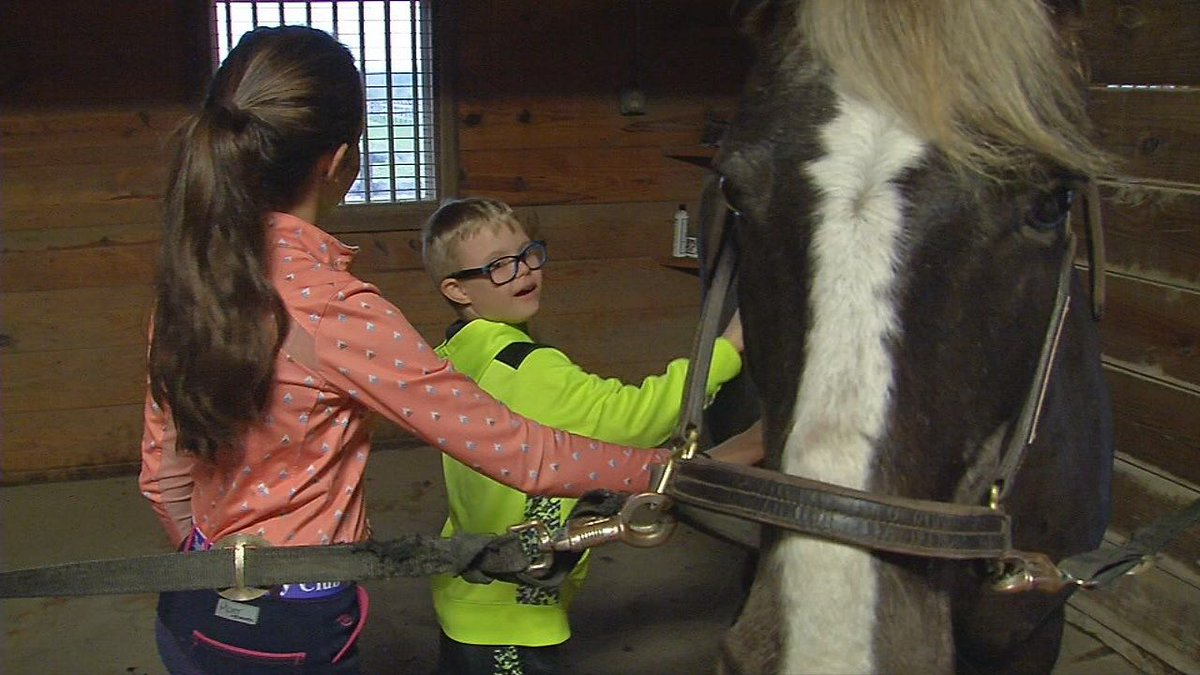 Foster children given the chance to experience horses