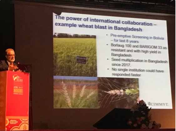 test Twitter Media - At the #BGRI2018, #cimmyt's @BraunHans1 explained how the @CGIAR wheat programs responded rapidly to the sudden outbreak of #wheatblast in #Bangladesh in 2016, a disease previously only found in South America.   New blast resistant varieties will be released soon in Bangladesh. https://t.co/vaxGUK0BAF