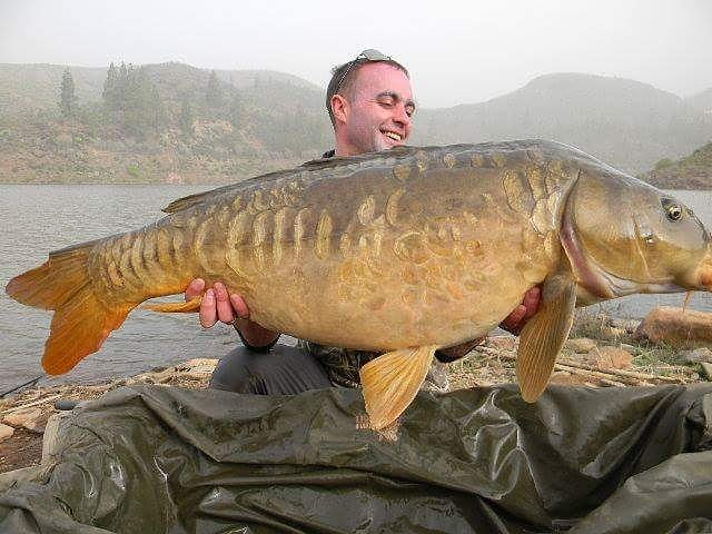 A beautiful 37lb <b>Mirror Carp</b> from Lake Chira..a very happy client!#Nash #grancanaria #carpfis