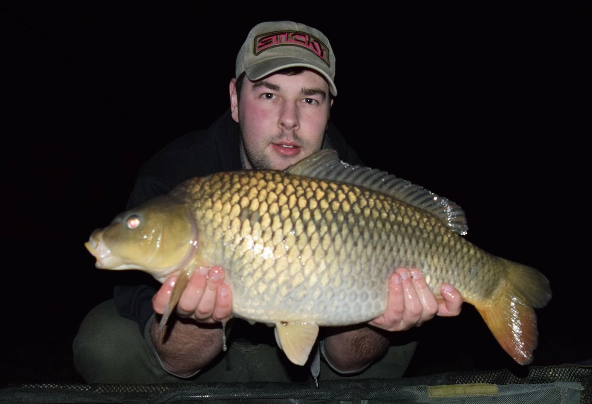 11lb common from a few weeks a go ! #CARPFISHING #stickybaits #pineapple #<b>Commoncarp</b> https://