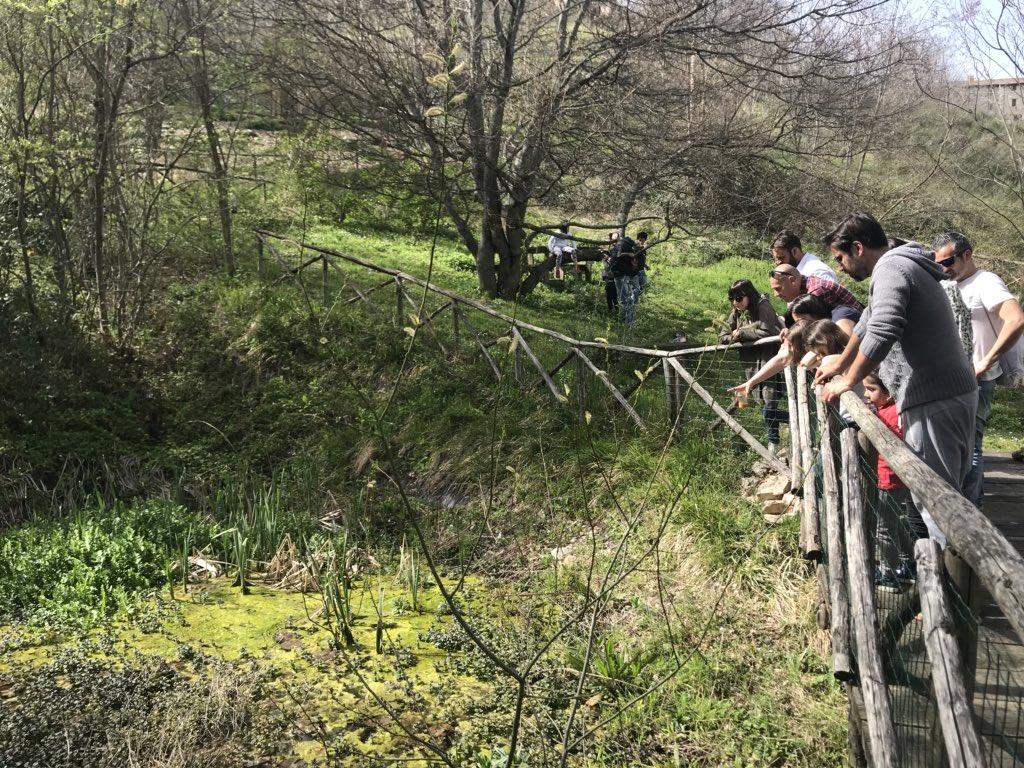 test Twitter Media - Finalmente dopo tantissimo tempo e tanti intoppi riapre il #giardinodellefarfalle di #Cessapalombo nel Parco Nazionale dei Monti #Sibillini ... un bellissima storia dal #lietofine nelle #Marche ❤️ #marcheforkids #viviamolemarche https://t.co/LwZ7CKvr2C