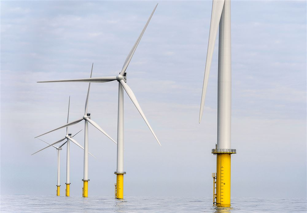 test Twitter Media - Visser: 'Ik ben voor groene energie, maar windmolens bouwen op zee is slecht voor de natuur.' Is dat zo? https://t.co/CfS5Jnm7gq https://t.co/t0oTFuRUX4