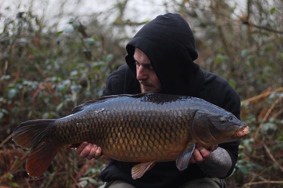 Stunning common for Daz Barker at 17lb 4oz. #carp #carpfishing #stunner https://t.co/lP1yG0ooAM