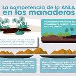 RT @ANLA_Col: Conozca la competencia de la @ANLA_Col en el tema de manaderos  ⤵ https://t.co/7S7LYIaWv1