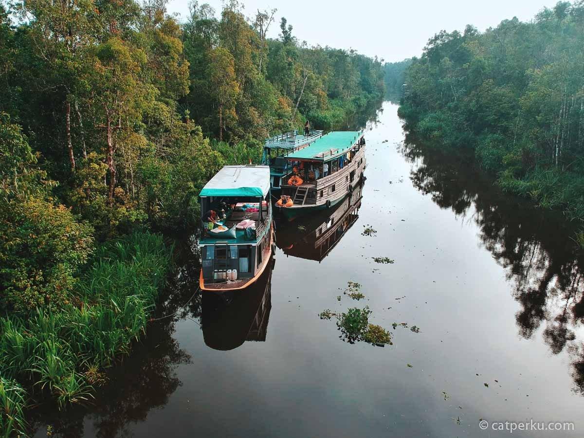 RT @idbcpr: Jelajah Taman Nasional Tanjung Puting, The Last Orangutan Sanctuary https://t.co/GnfzlrATog #travelblog https://t.co/2tvxfRJiZt