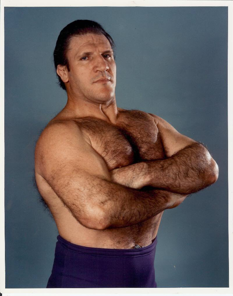 Bruno Sammartino, Pro Wrestlin bruno sammartino