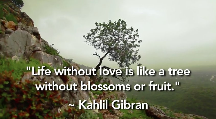 Reflect on #love for a moment, thanks to Kahlil Gibran. https://t.co/iExXgGaBxi https://t.co/sViVz9sZ5T