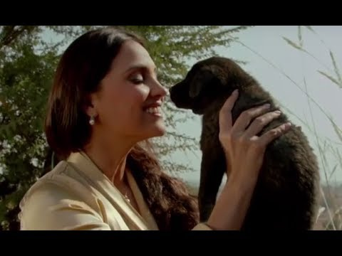 Happy Birthday Lara Dutta!!! -  The Times24