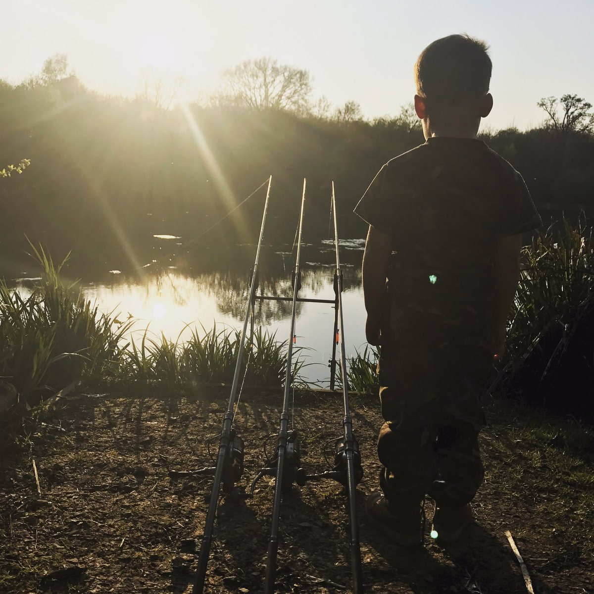 The youngest keeping watch, #CarpFishing #carphunter #activebaitsolutions #<b>Sunset</b> #kent https