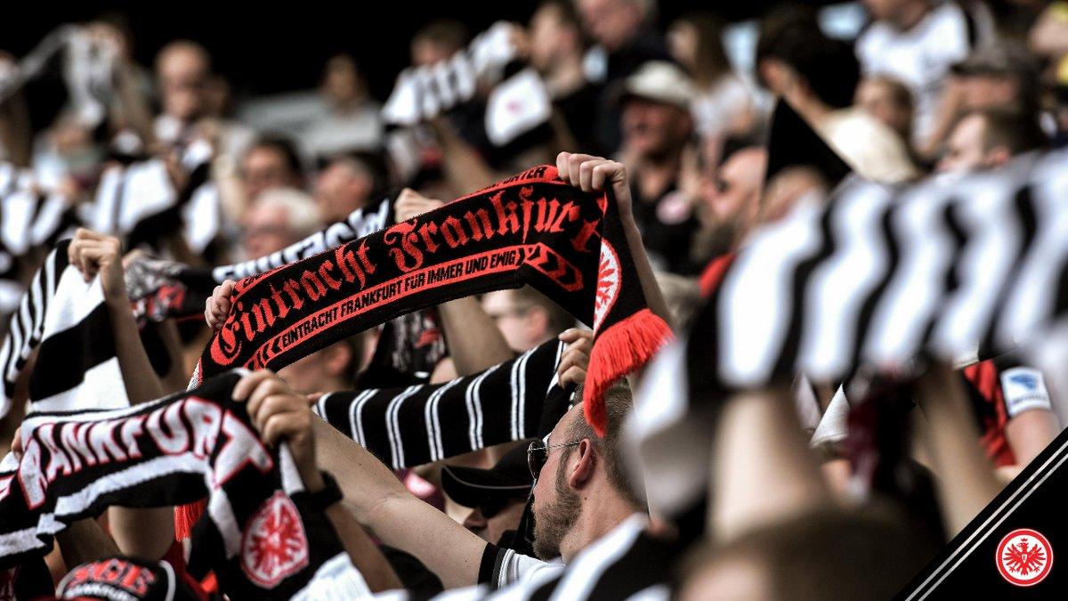 Komm schon, Eintracht! 🦅 #SGE #SGEBSC 0:1 https://t.co/iRHQas9g3T
