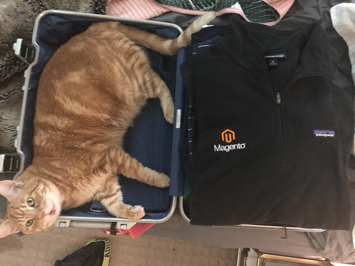 MagentoJ: I have discovered a potential stowaway on my #RoadtoImagine. https://t.co/Su1IRtCXAR