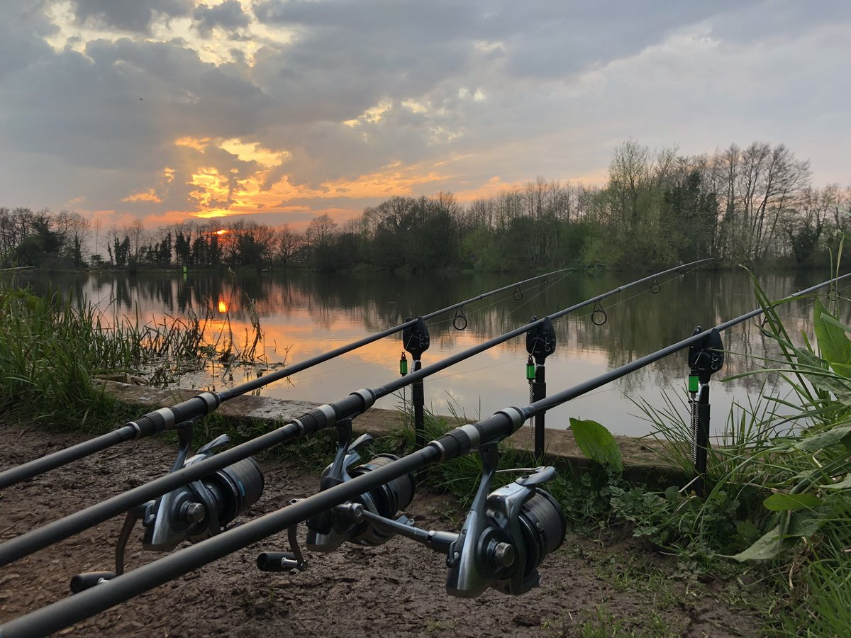 Stunning setting #carpfishing #carpy https://t.co/4v8T2cm0Uy