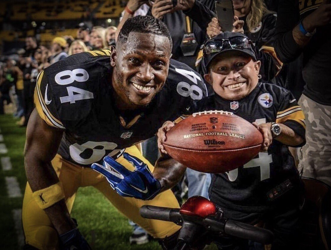 steelers verne troyer