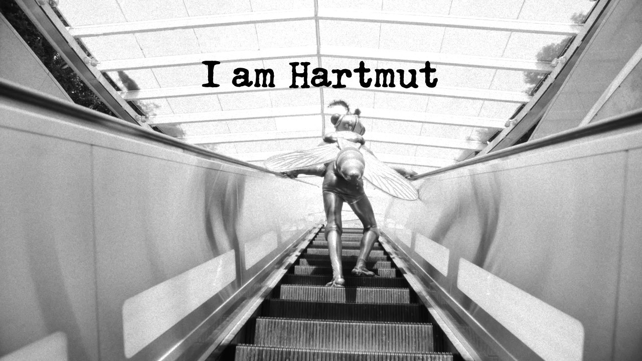 Why does everyone hate mosquitoes? #IAmHartmut https://t.co/JlkjGZMbd8