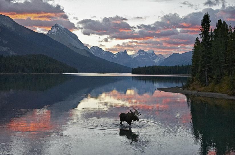 Night Lost Lake,Alaska #INDIGENOUS #TAIRP https://t.co/v315Q7wF4O