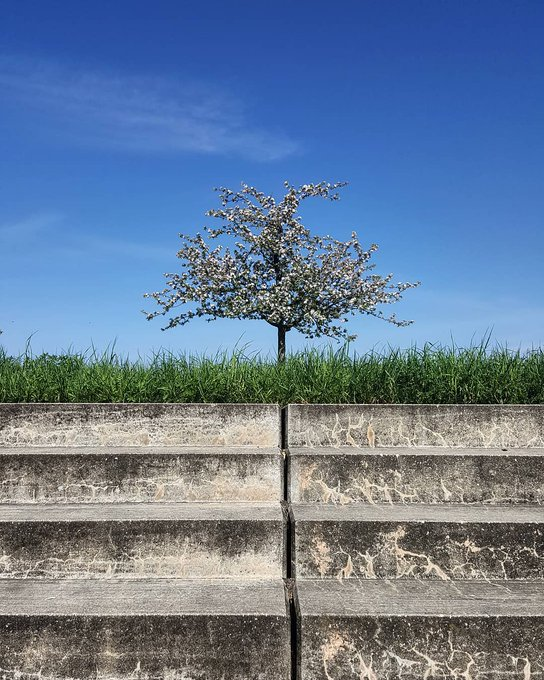 @instagram: Nature > concrete #WHP? https://t.co/gKEsjQV2XA https://t.co/PsV2RRWuFE