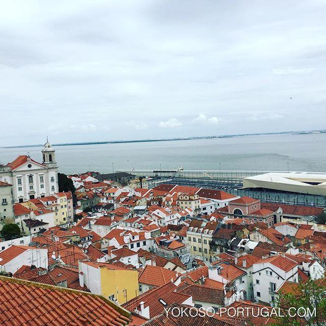 test ツイッターメディア - リスボンのポスタス・デ・ソル展望台からアルファマ地区とテージョ川の眺め。明日04月25日は自由記念日でポルトガルは祝日になります。 #リスボン #ポルトガル https://t.co/2NhaSdEazy
