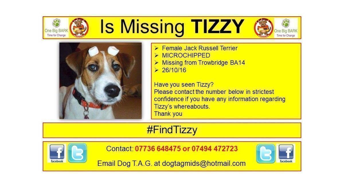 RT @DogTAGMids: #FindTizzy  #lostdogalert WHERE ARE YOU? Time to come home 🐶💔 https://t.co/aw8l1sUWUN