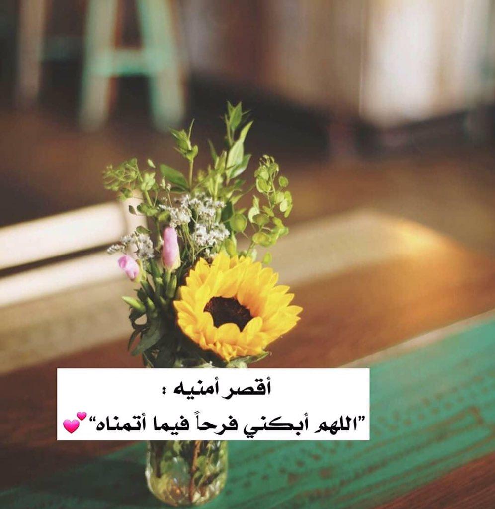 RT @amaal_1312: #صباحكم_سعاده_ياساده https://t.co/SZu2291yHT