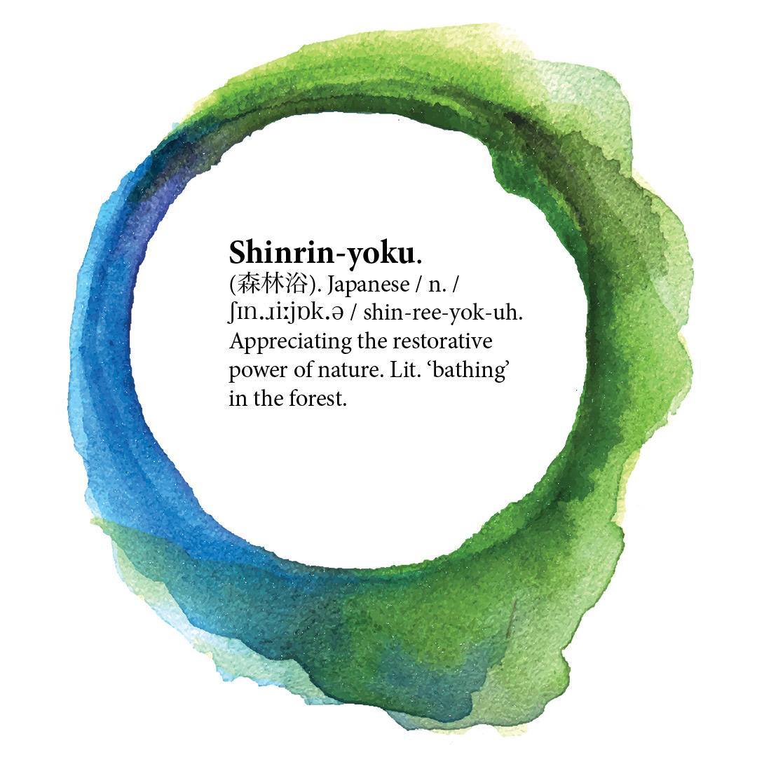 test Twitter Media - Ringing in #Spring with this week's word from @drtimlomas #TranslatingHappiness: Shinrin-yoku (森林浴). Japanese. Appreciating the restorative power of nature. Lit. 'bathing' in the forest.  https://t.co/W1Cy2kAiBA https://t.co/cUHzCbImJd
