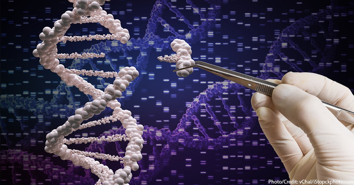 test Twitter Media - The Holy Grail Within Pandora's Box: In our new blog post, Judith Reichel (@worklifesthg) explains the #CRISPR #Cas #geneediting tool and describes the opportunities and risks created by the technology. https://t.co/AFYkUWtYiD https://t.co/1EZ6va4136