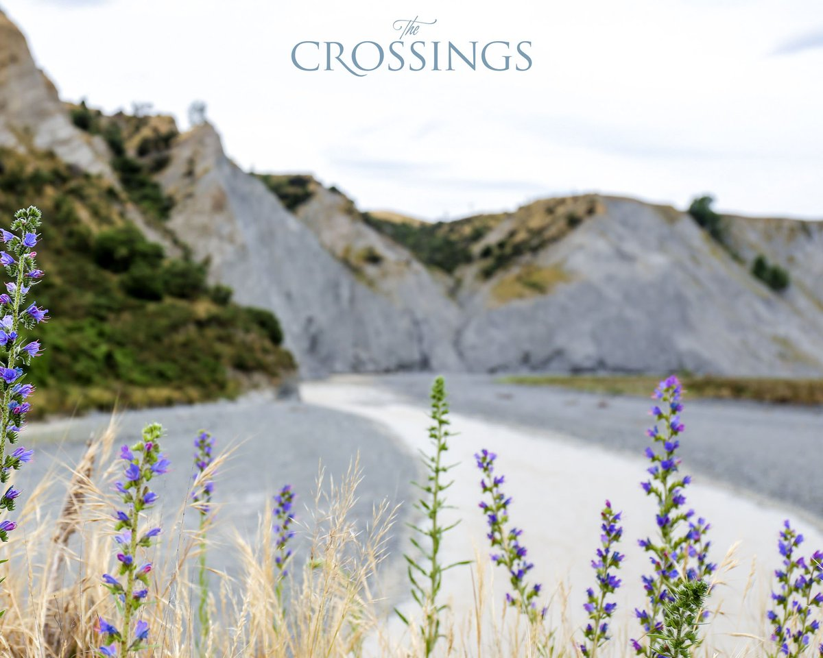 test Twitter Media - Our wines are able to convey such distinction because we carefully nurture our vines in extreme conditions, allowing our talented winemakers to deftly let the wild, true character of our land speak in every glass. Have you tried it?   #nzwine #discoverthecrossings #sauvblanc https://t.co/rOYCAtPo6s