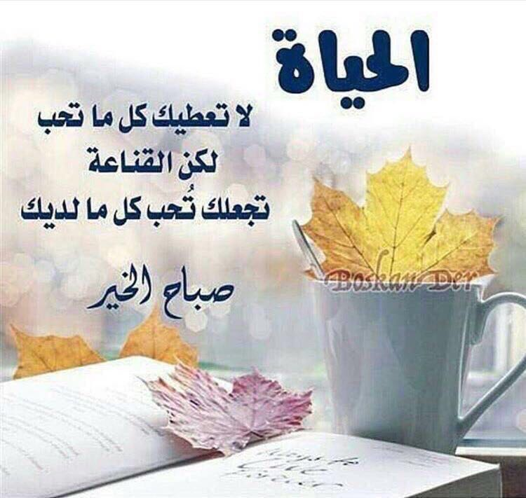 RT @hessasuleiman: #صباحكم_سعاده_ياساده  #ᎶᎮ_angelic https://t.co/fiEYRblTaK