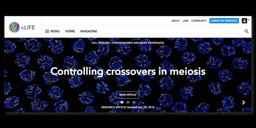 test Twitter Media - This week, our cover article reports that a compartmentalised signalling network mediates crossover control in meiosis https://t.co/jtmYKbQnJW https://t.co/k8G2spnotE