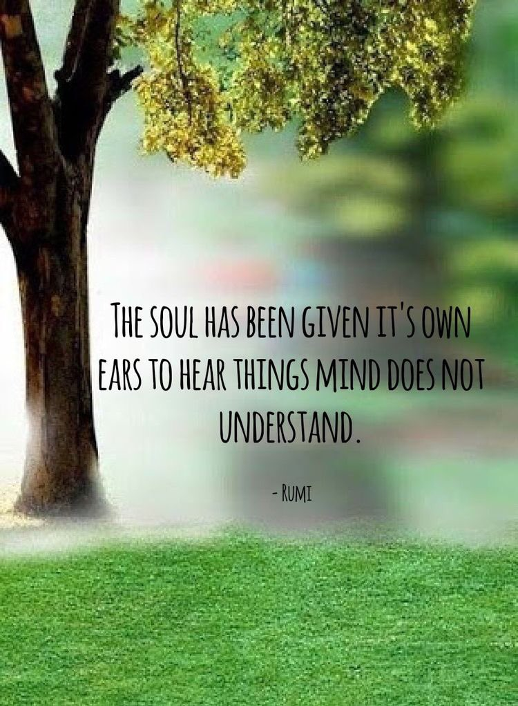 test Twitter Media - The soul has its own ears #listen #rumi #loopjegelukkig https://t.co/tMMqlcQwSx