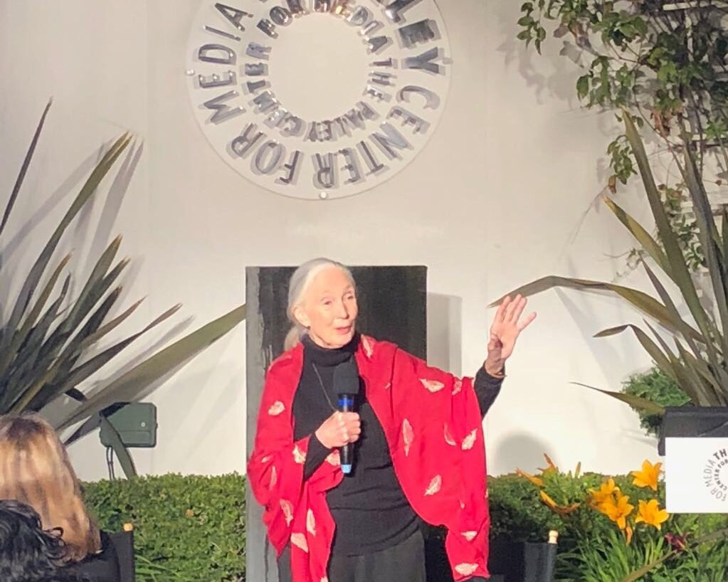 The inspirational #JaneGoodall at Monday's philanthropy dinner following the Milken Institute Global Conference. https://t.co/m2yz2Var5G