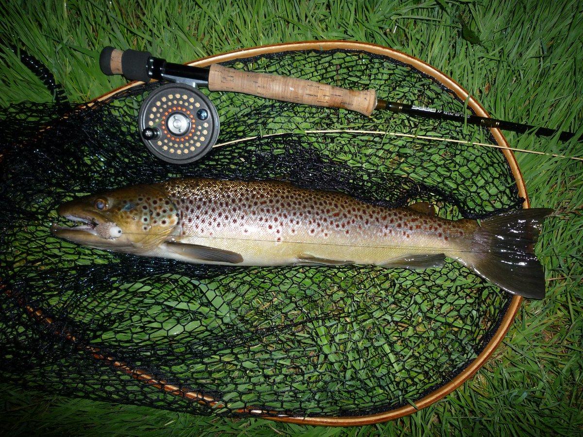 Who likes it ?  #carpfishing #<b>Lure</b> #sportfishing https://t.co/HTYxVCYL3z