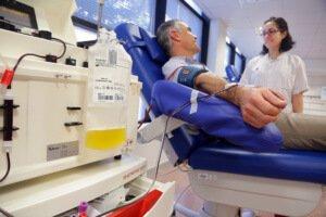 test Twitter Media - Les cinc diferències entre la donació de plasma i la de sang https://t.co/vb3SheIw8f https://t.co/bAc4u6cxbM