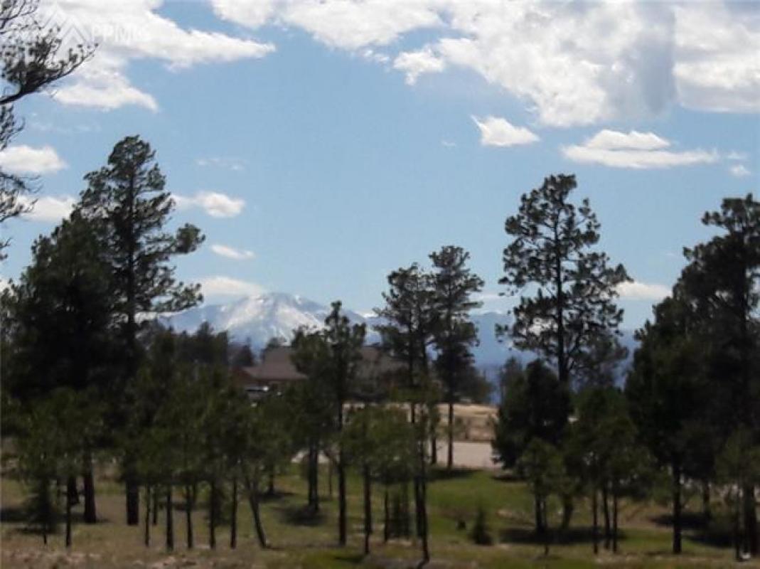 #ColoradoSprings