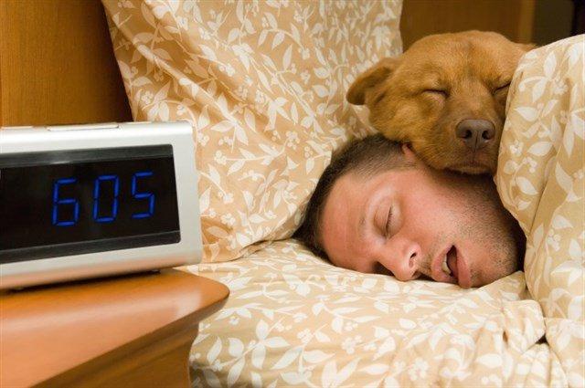 test Twitter Media - El sueño y la edad: ¿Cuántas horas hay que dormir? https://t.co/eK3XKPBL1F Vía: @infosalus_com https://t.co/F3VgWSLUYI