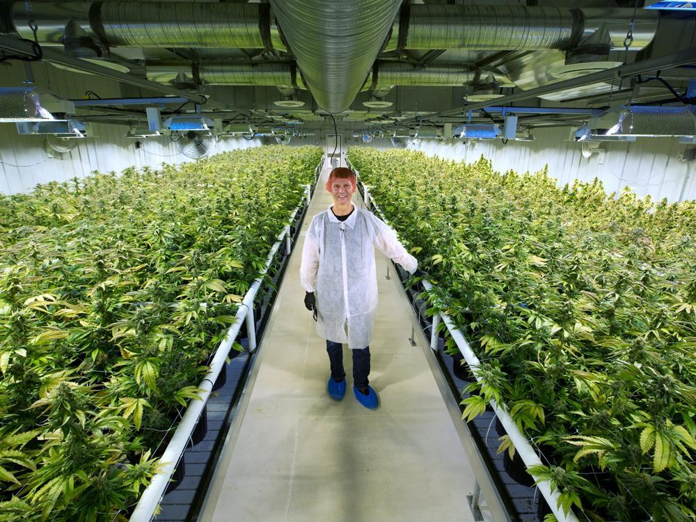 Aurora grows Canada's biggest cannabis empire by buying rival MedReleaf in $3.2 billion deal