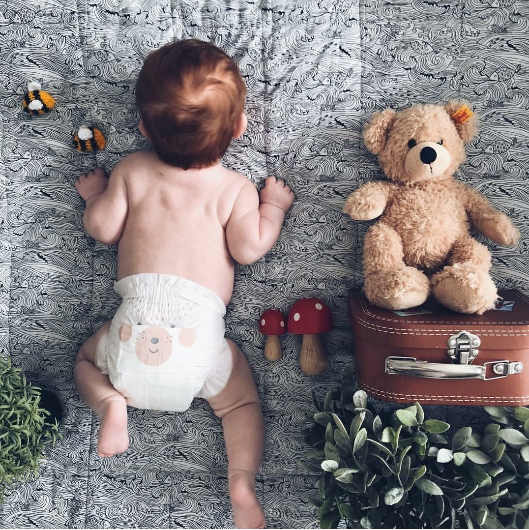 RT @KitandKinUK: Two little bears ???????? #repost https://t.co/iWxKOGUlw6